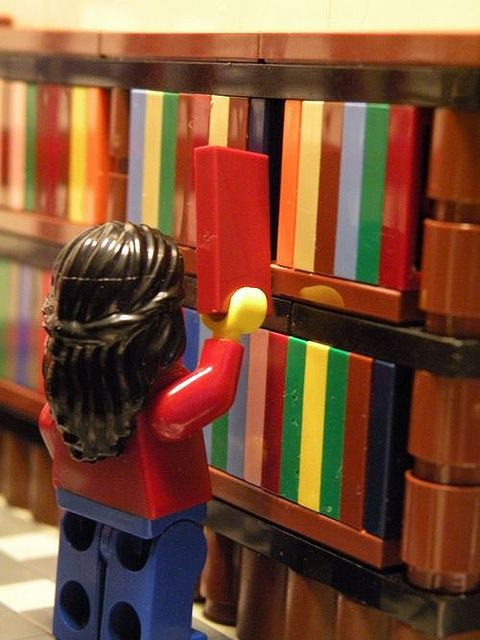 Lego librarian: career choices